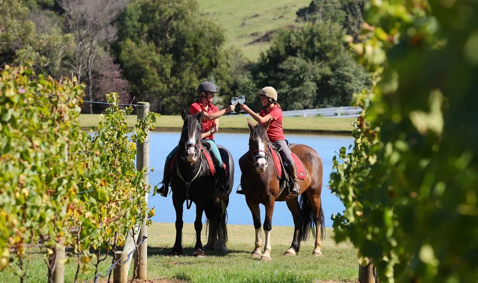 A vino-inspired excursion with Horseback Winery Tours in Mornington Peninsula