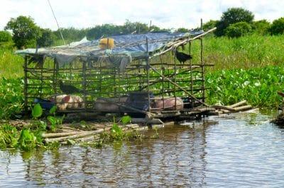 Cambodia Beyond Angkor Wat: Meeting Tonle Sap's Floating Community