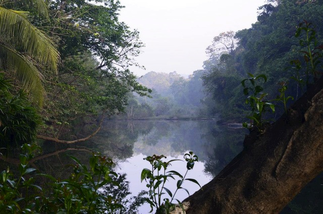 Kaliyar River