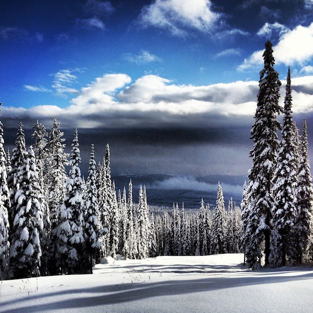 7) Cruising through endless fields of Okanagan champagne powder snow