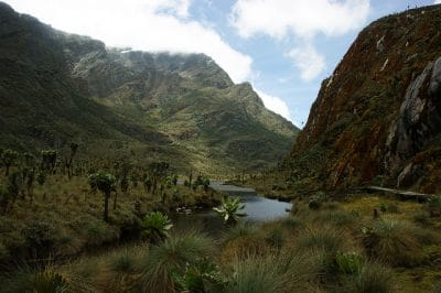 How Climate Change Is Affecting Africa's Rwenzori Mountains (And Why You Should Visit While You Still Have The Chance)