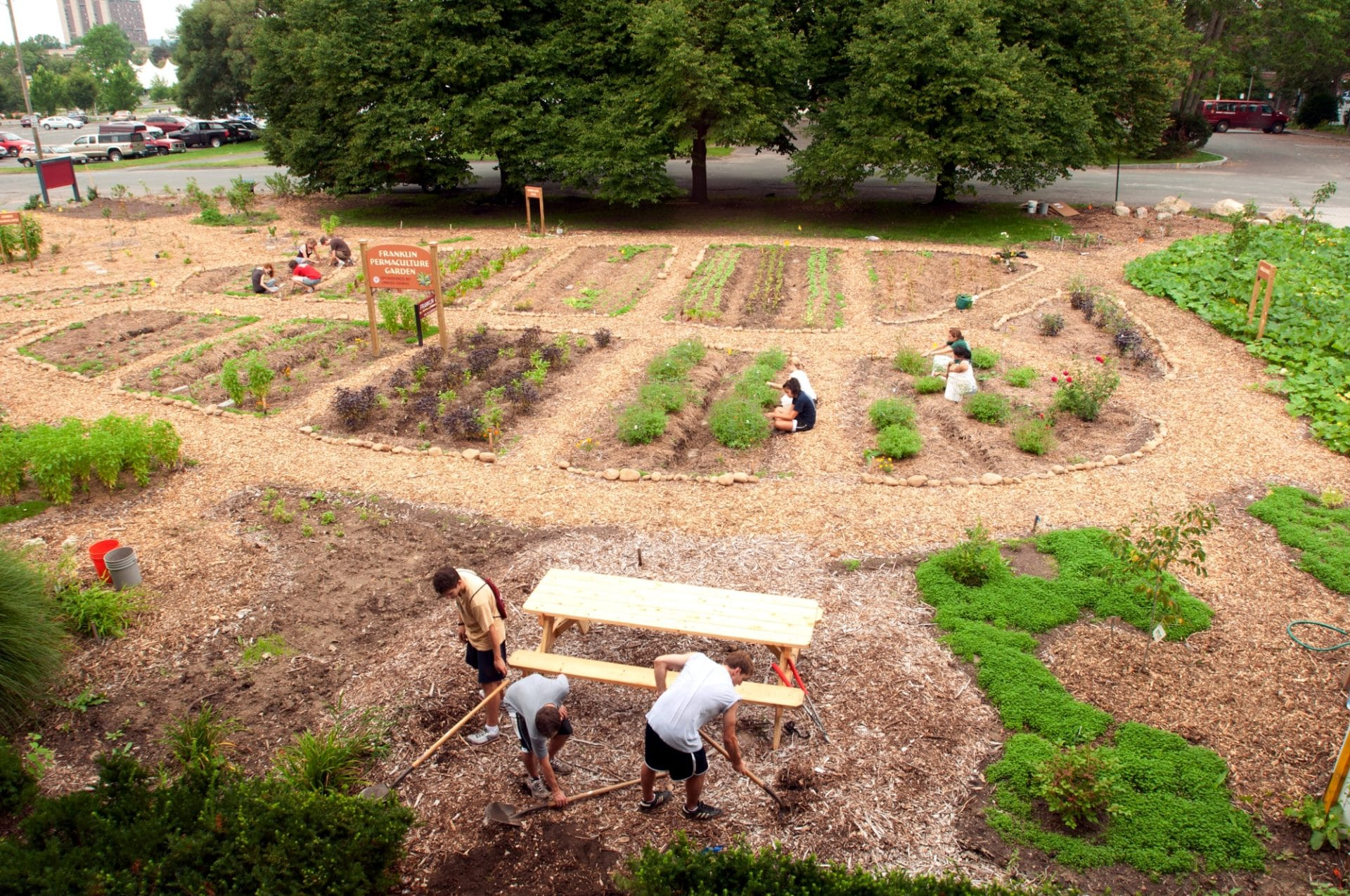 Permaculture volunteer for sustainability epicure culture epicure culture for Culture permaculture