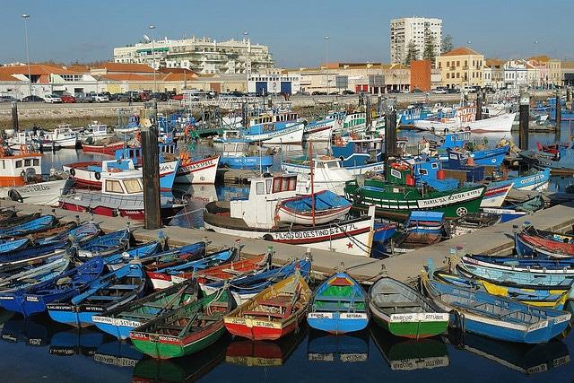 Portugal fishing boats.