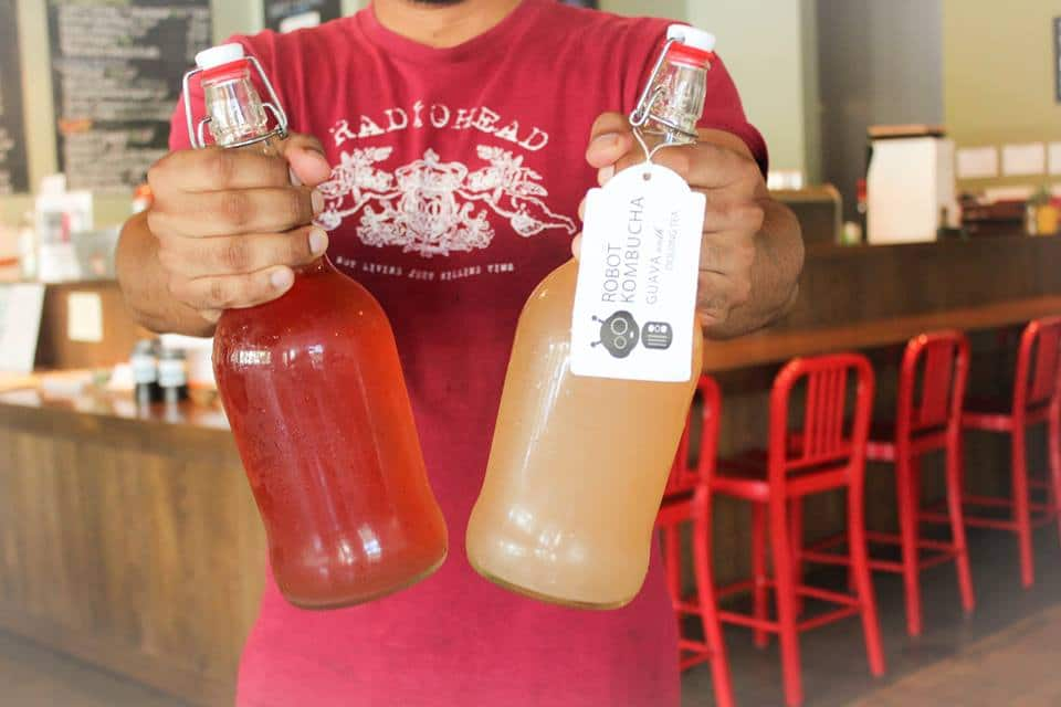 Homemade Tree Fort soda and Kombucha.  Photo courtesy of Verdant Tea.