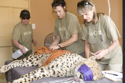 Africat health team. Photo courtesy of Wilderness Travel.