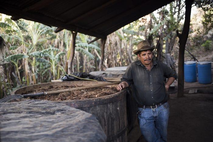 Oaxaca organic mezcal