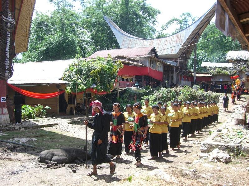 Toraja Death Rituals l How To Experience This Unique Cultural Event : Epicure  Culture